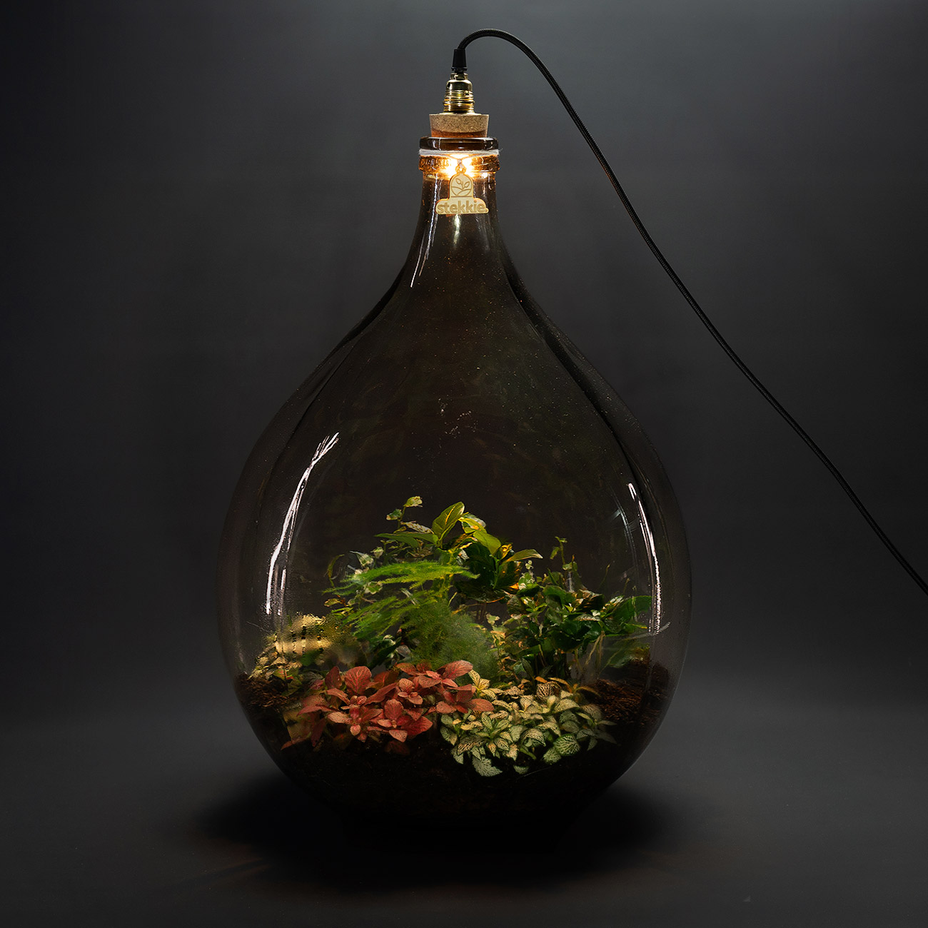 stekkie-extra-large-mini-ecosysteem-lamp-donker