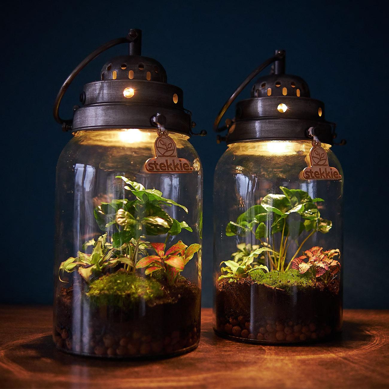 stekkie-cylinder-donker-met-lamp